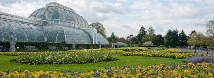 Royal Botanic Gardens, Kew Tickets   Richmond Attractions Tickets ...